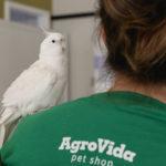 I Encontro do Amor Animal AgroVida foi um sucesso!